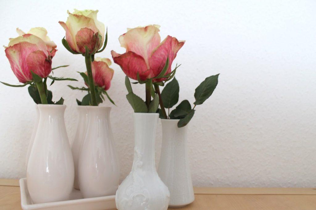 Rosen weiße Vasen
