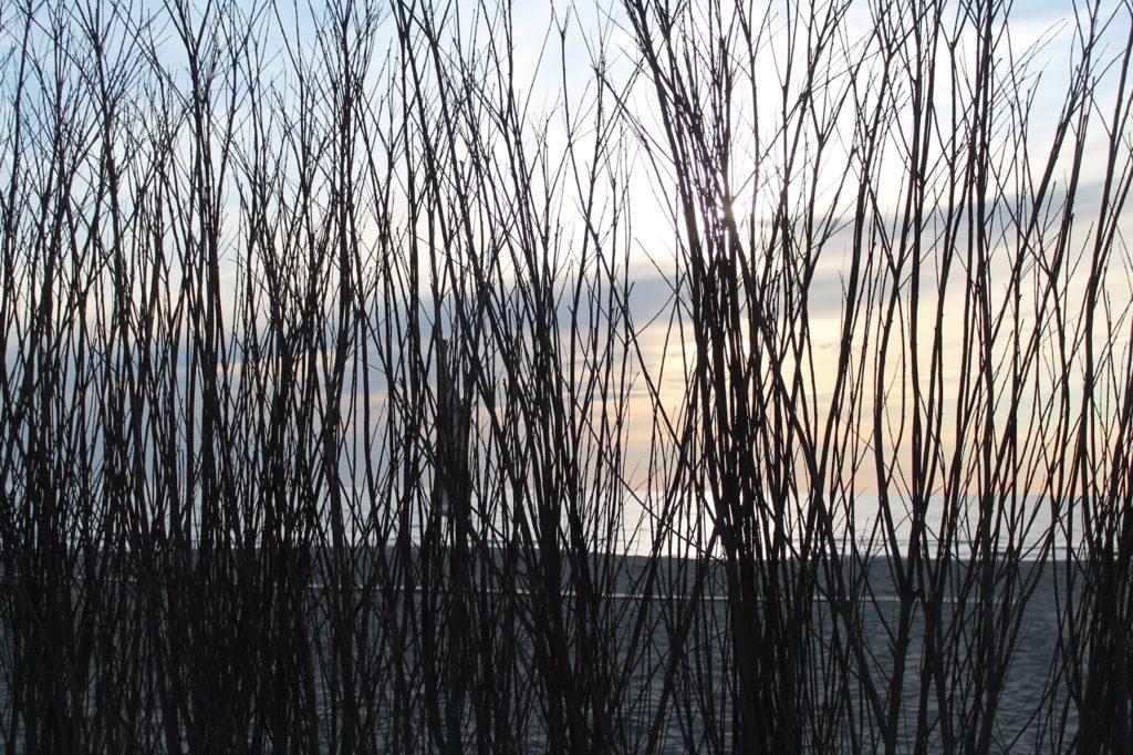 noordwijk zee