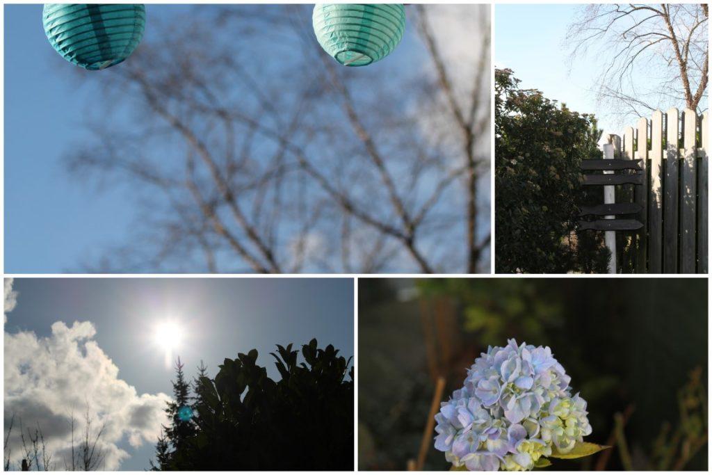 Dezember Garten