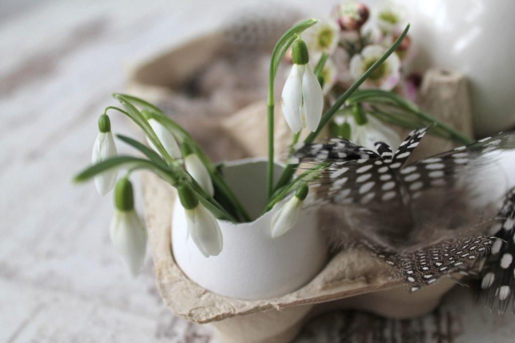 Ostergeschenk Ostern DIY im Eierkarton Eierschalen