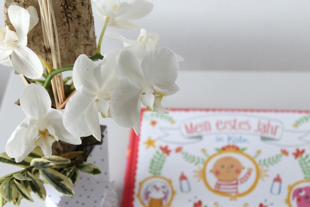 Geschenk Koeln Babys Geburt Mein erstes Jahr in Koeln Buchtipp jules kleines freudenhaus