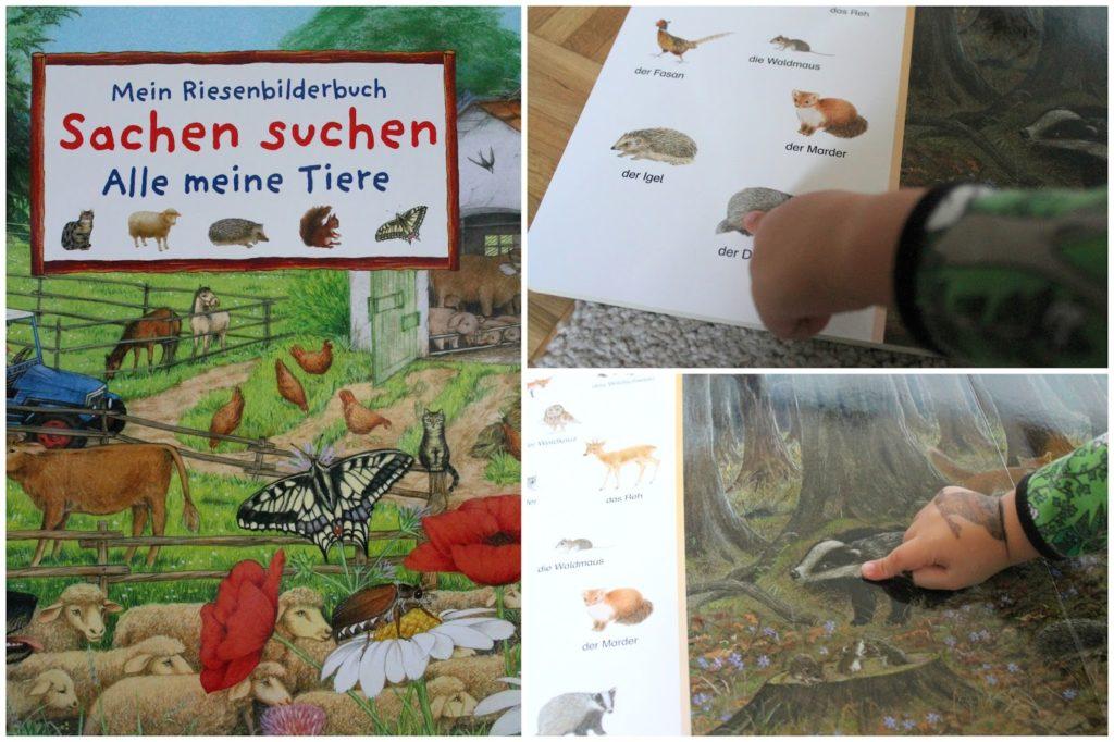 Riesenwimmelbuch Sachen Suchen Herbst Jules kleines Freudenhaus
