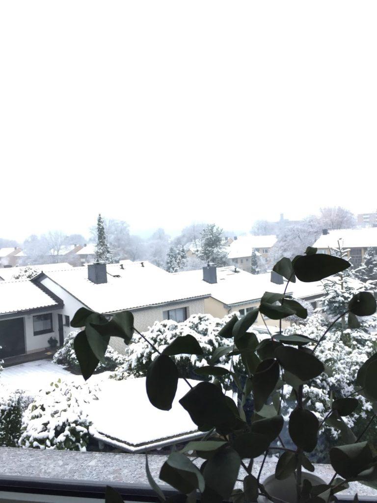 Winter Schnee Bergisches Land Jules kleines Freudenhaus