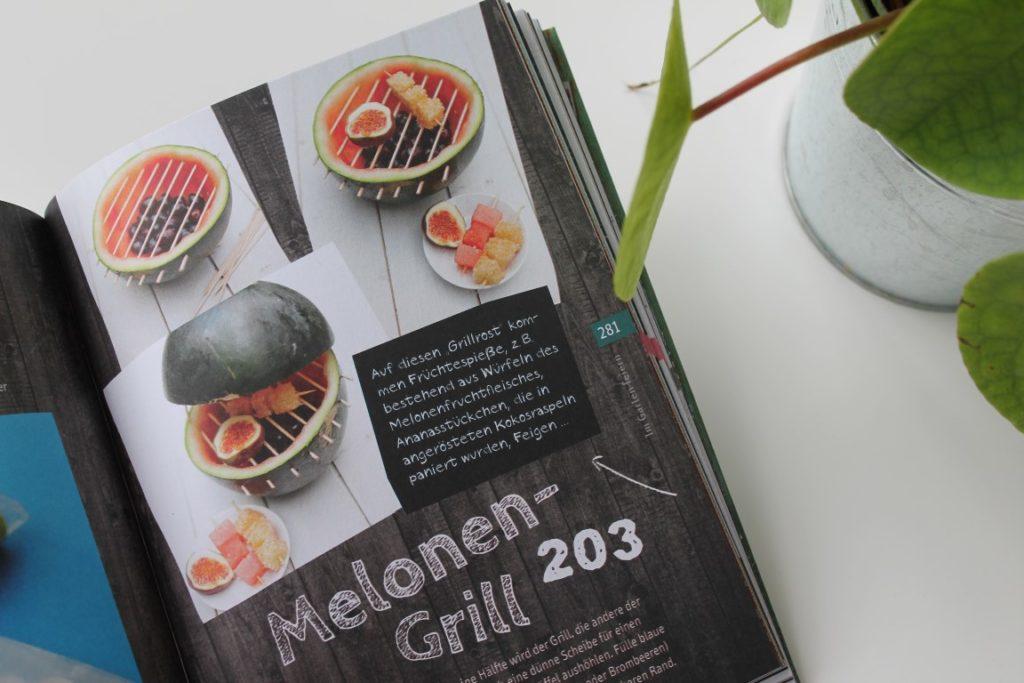 Buchtipp Trick 17 TOPP Verlag DIY Tipps Melonengrill Balkon und Garten Blumen Jules kleines Freudenhaus