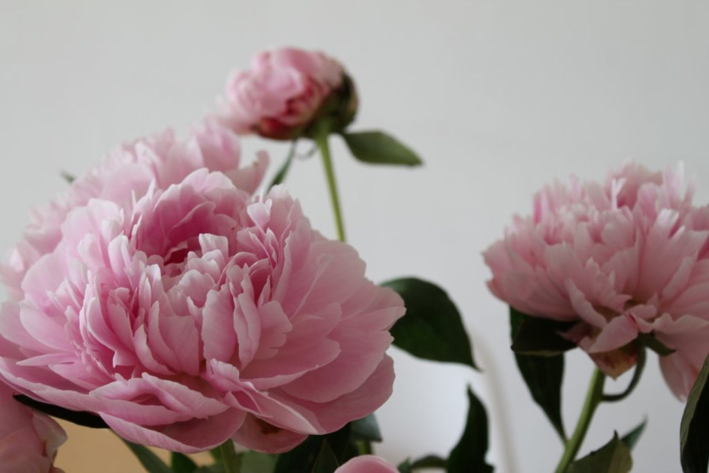 DIY Hochzeitsgeschenk Namensschild Scrabble Steine Pfingstrosen Brautstrauss