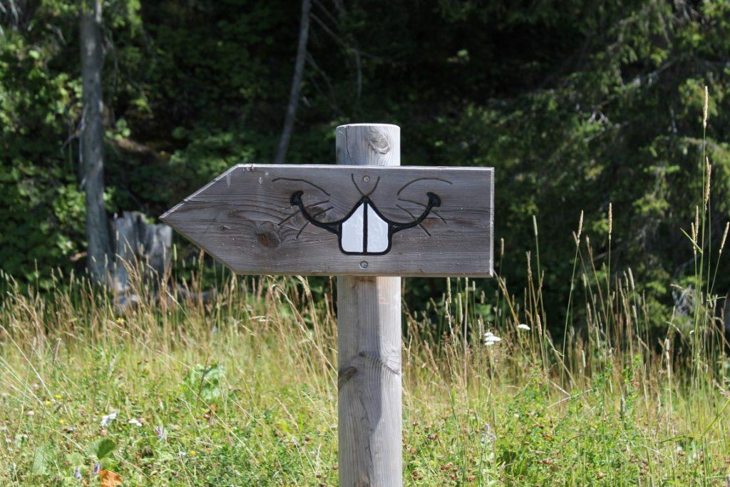 Steiermark Schladming Planai Hopsiland Familienurlaub Berge Jules kleines Freudenhaus