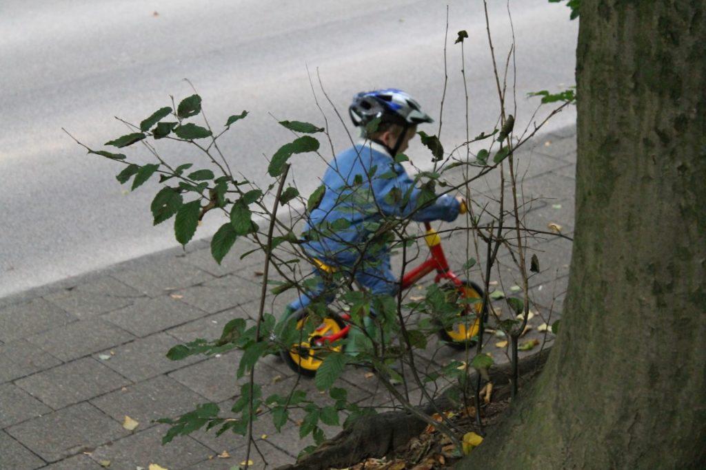 Herbstwald Waldbesuch Smafolk ELTERN Herbstkollektion Kooperation Fall 2017 Herbstfunde Wald Jules kleines Freudenhaus Laufrad fahren