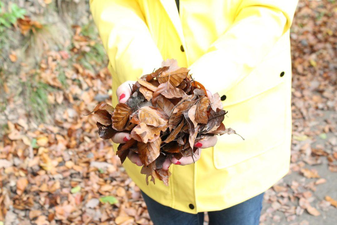 Herbstideen DIY Hebrstliste 10 Dinge