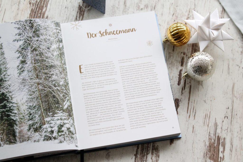 Geschichte Schneemann aus White Christmas Buchtipp Jules kleines Freudenhaus Hoelker Verlag