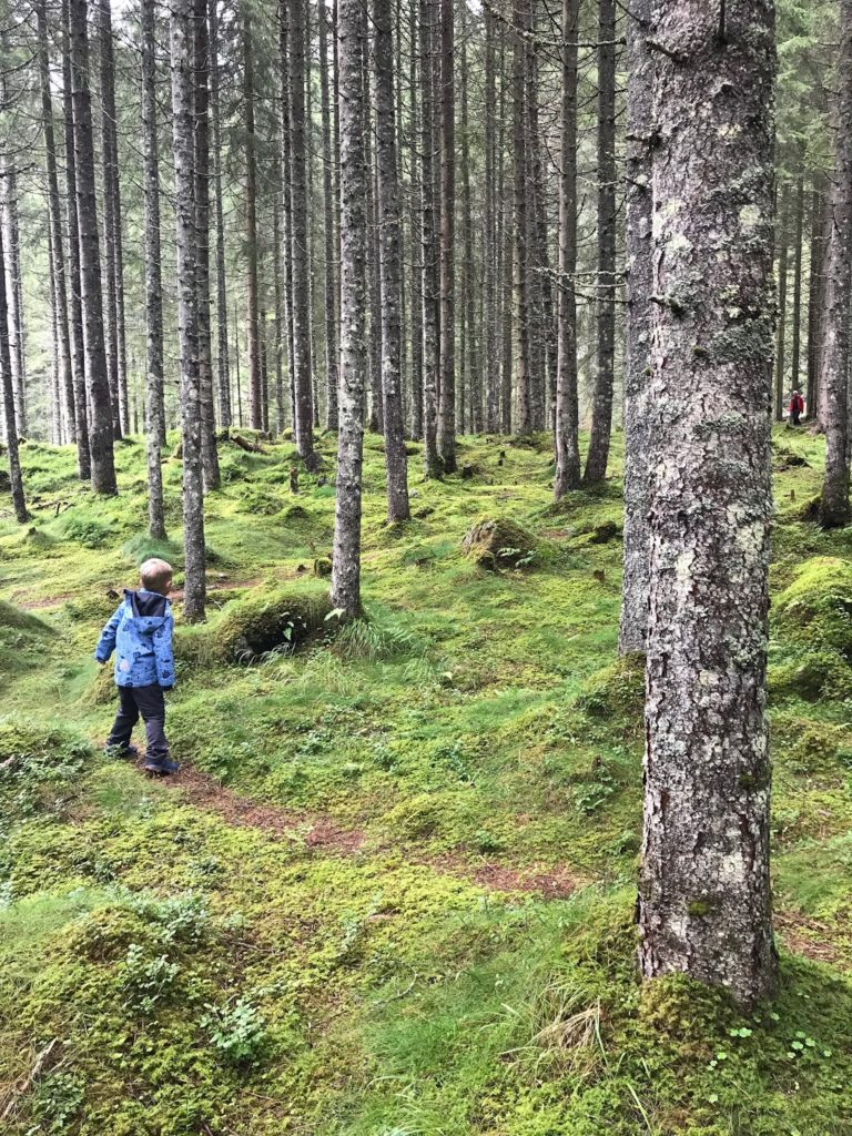 Riesachwasserfall Tipps Wandern mit Kindern Ausflugsziele Ausruestung Oesterreich Jules kleines Freudenhaus