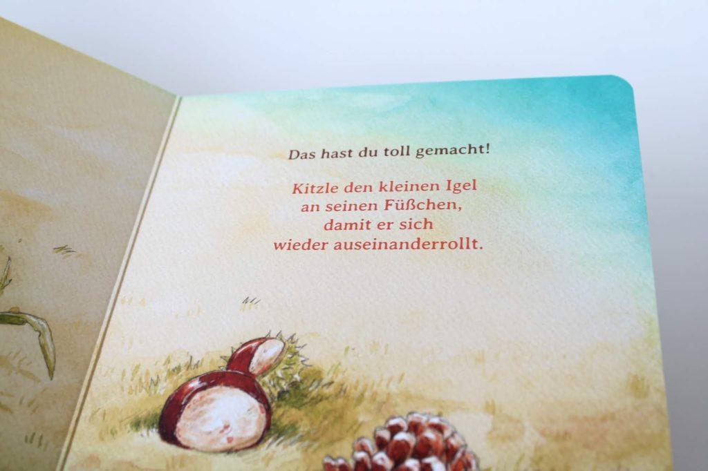 Schlaf schoen kleiner Igel Herbst Neuheiten Kinderbuecher Boje Verlag Kinderbuchtipp Buchtipp Leseratten Jules kleines Freudenhaus