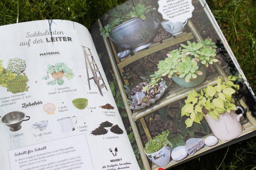 Innenteil 50 gruene Dekoideen Buchtipp LV Buch Verlag Jules kleines Freudenhaus inkl Verlosung
