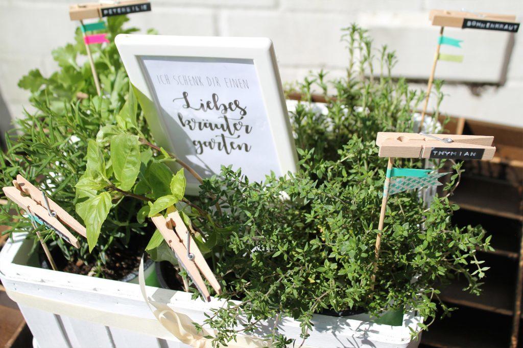 Muttertag Kraeutergarten DIY Geschenkidee Mitbringsel Jules kleines Freudenhaus