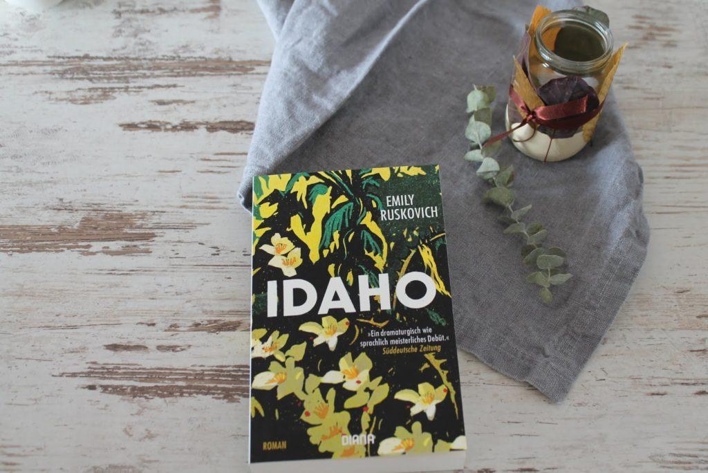 Buchtipp Idaho Taschenbuch Herbst Jules kleines Freudenhaus