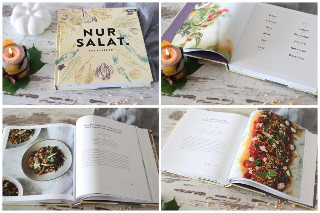 Buchtipp Nur Salat Callwey Verlag Jules kleines Freudenhaus