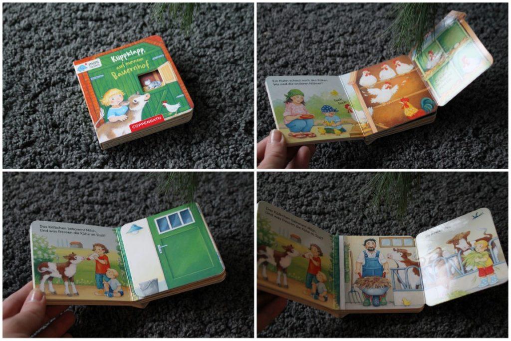 Bauernhofbuch Minifanten