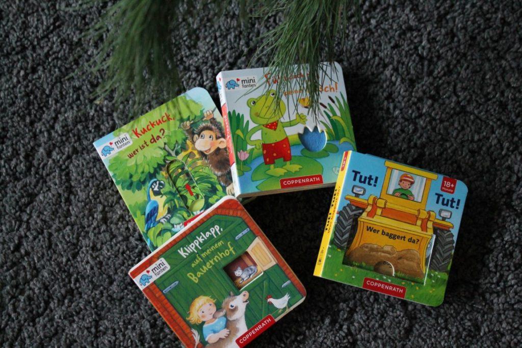 Kinderbuchserie Minifanten