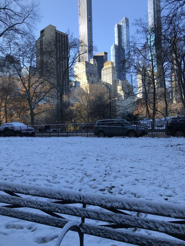 Central Park Winter Wonderland