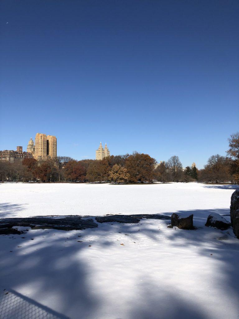 New York Central Park Love Winter Wonderland