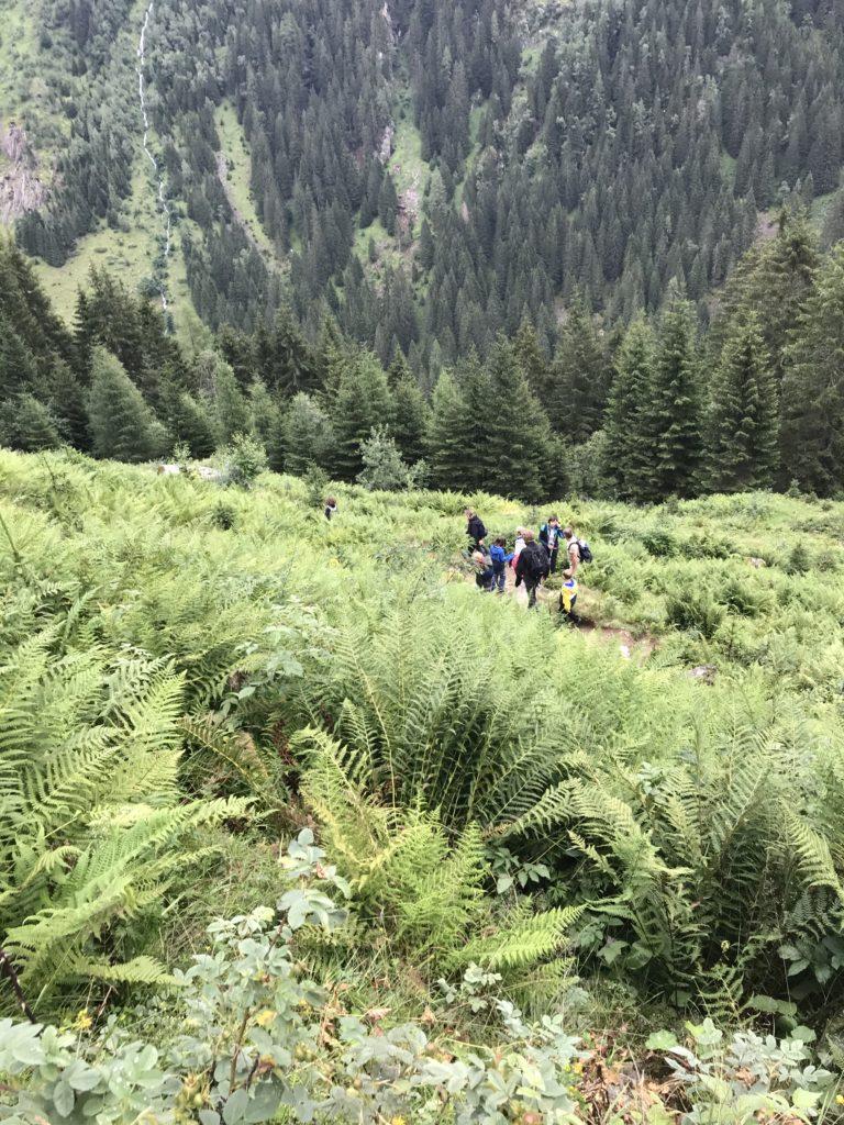 Wandersteig Österreich