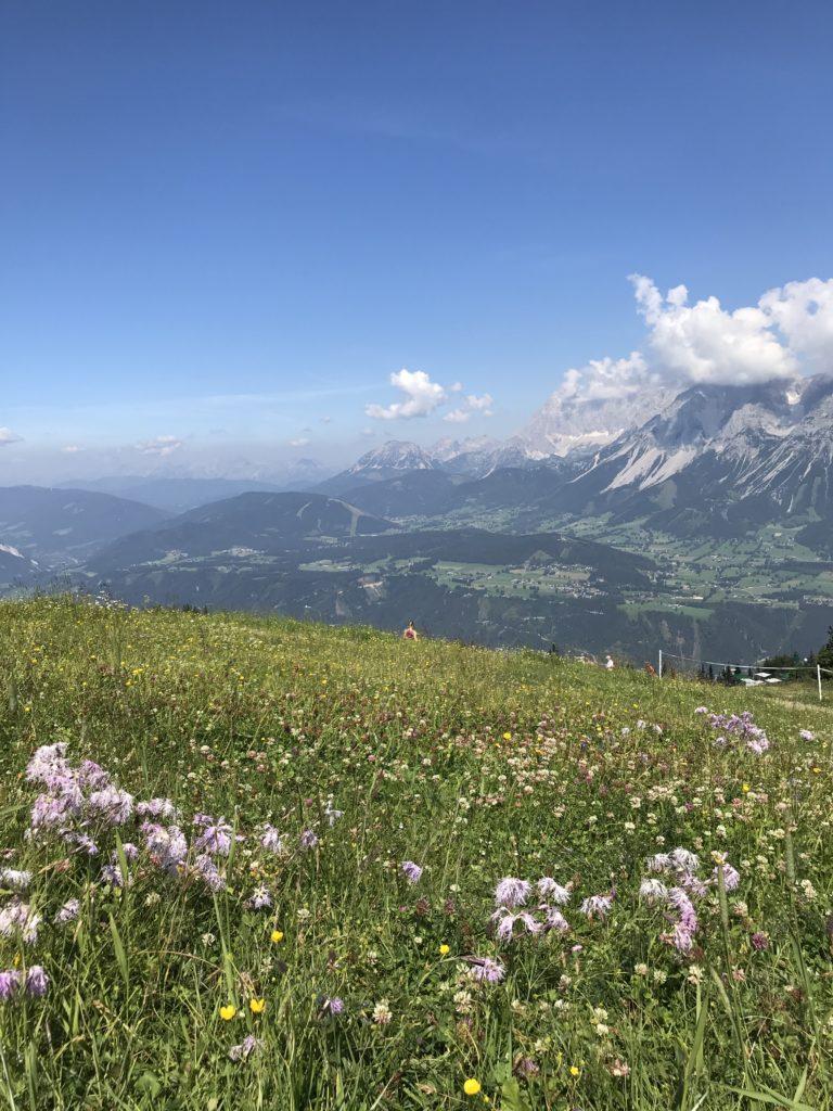 Planai Gipfel Schladming