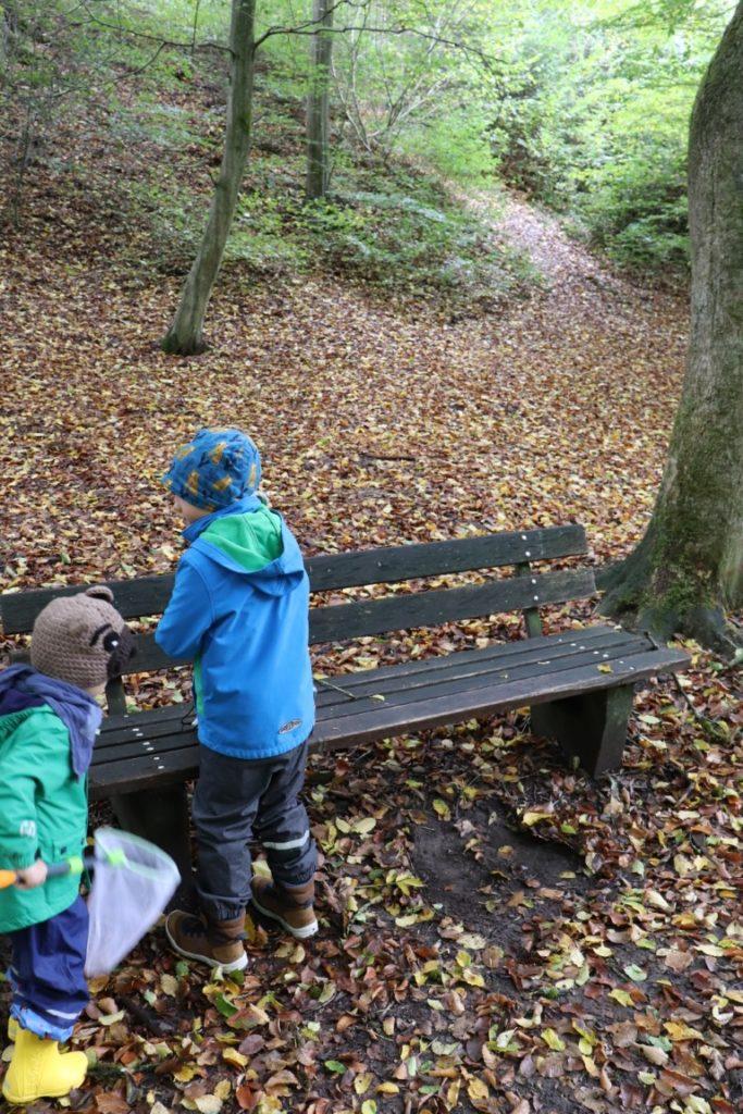 Bank Pause Spielend Wandern Herbstwald