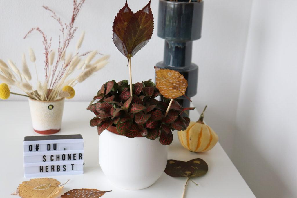 Laubtiere Herbst
