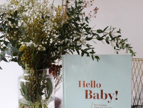 Buch Erinnerung Hello Baby!