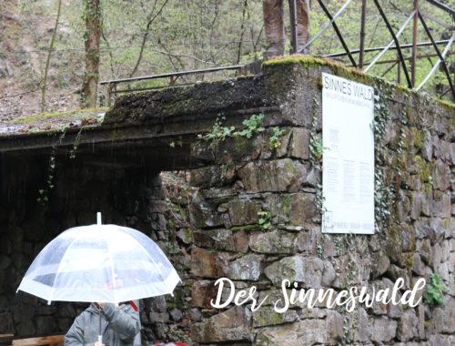 Sinneswald_Eingang