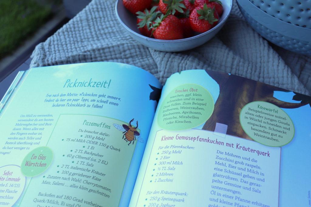 Petronella Apfelmus Ferienbuch Rezepte